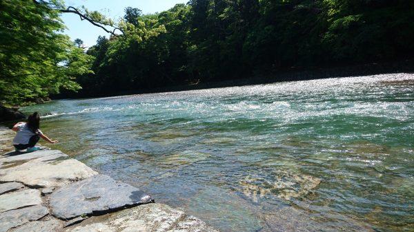 日本屈指の清流五十鈴川は前日の大雨で激流中!