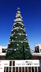 Yaffaのロータリーにあったクリスマスツリー! 当然一部ではユダヤ教と共にキリスト教の教会もあります!